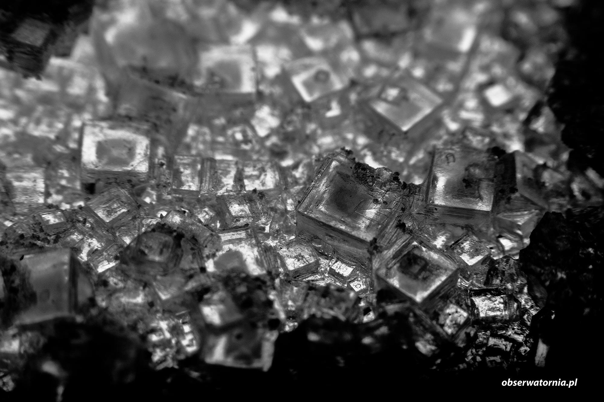 Kryształki soli kuchennej
